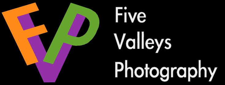 FVP logoBlack